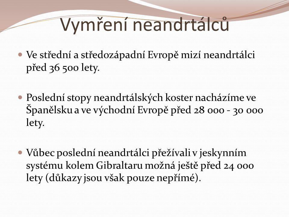 Vymření neandrtálců Ve střední a středozápadní Evropě mizí neandrtálci před 36 500 lety.