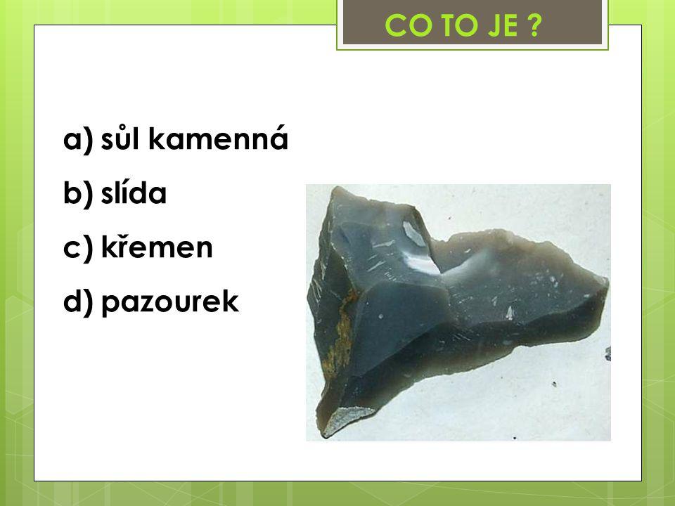 a)sůl kamenná b)slída c)křemen d)pazourek CO TO JE ?
