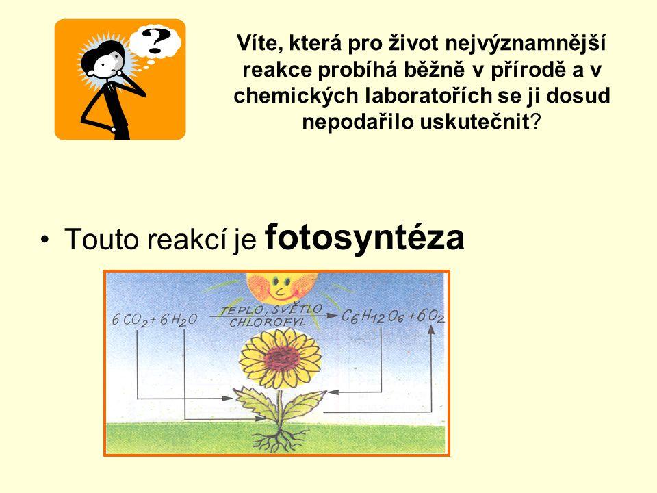 Víte, která pro život nejvýznamnější reakce probíhá běžně v přírodě a v chemických laboratořích se ji dosud nepodařilo uskutečnit.