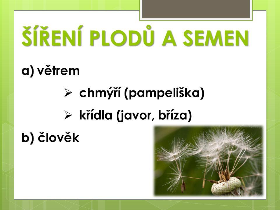 c) živočichy  háčky (lopuch) přenos na srsti  přes trávicí trakt (bobule) d) sama rostlina  vystřelování semen (netýkavka)