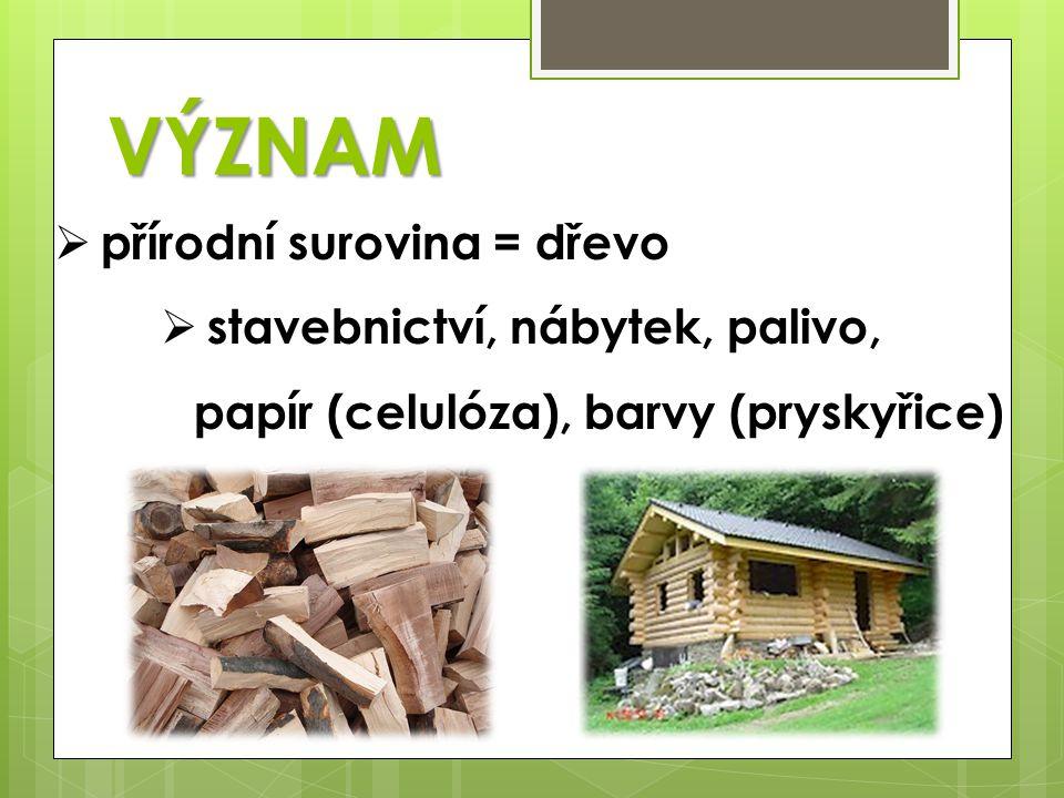 VÝZNAM  přírodní surovina = dřevo  stavebnictví, nábytek, palivo, papír (celulóza), barvy (pryskyřice)