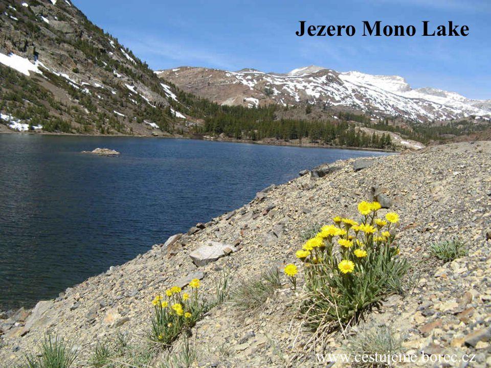 www.cestujeme.borec.cz Jezero Mono Lake