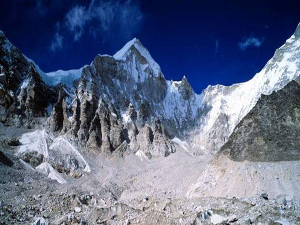 Quinghai -Tibetská náhorní plošina je domov chiru – tibetské antilopy.