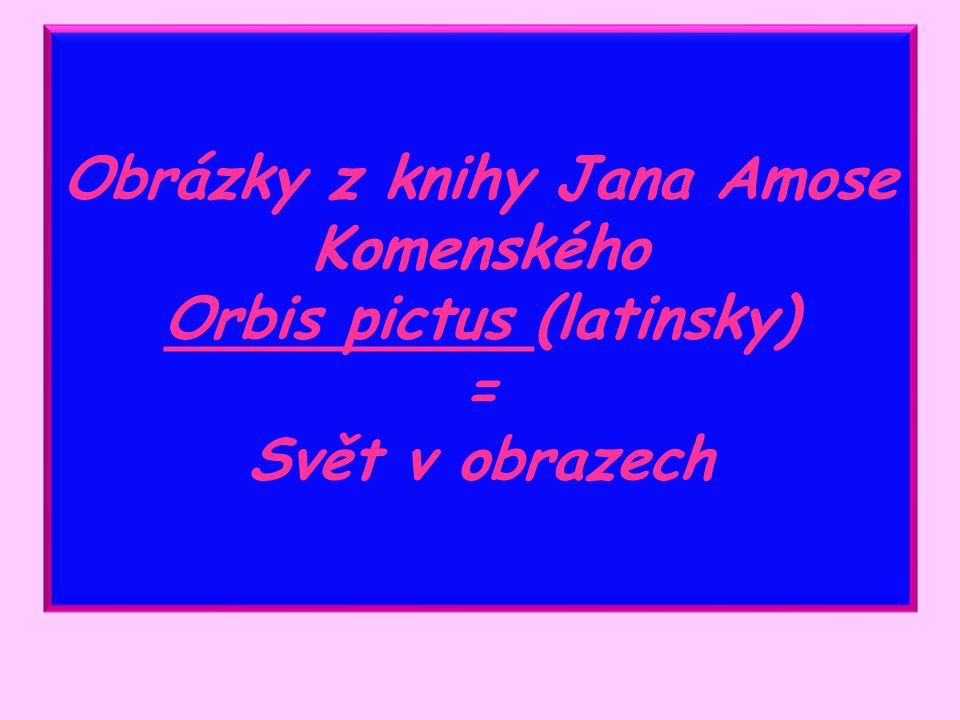 Obrázky z knihy Jana Amose Komenského Orbis pictus (latinsky) = Svět v obrazech