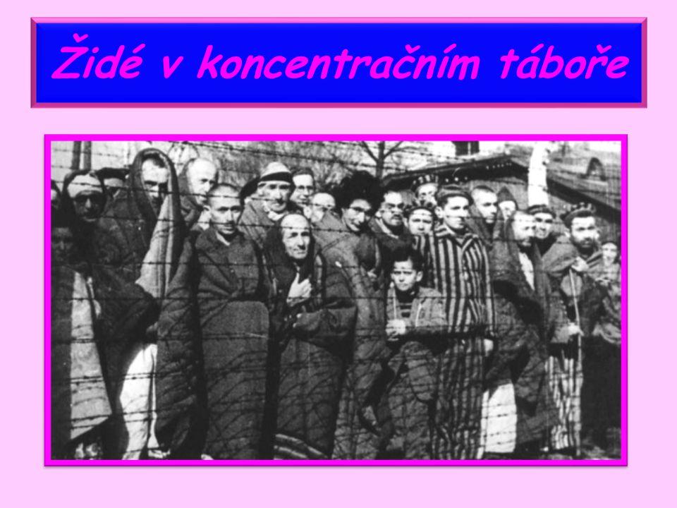 Krutý osud Židů ve všech zemích Židé krutě pronásledováni transportováni do koncentračních táborů hromadně zabíjeni v plynových komorách vyhlazováni jako národ
