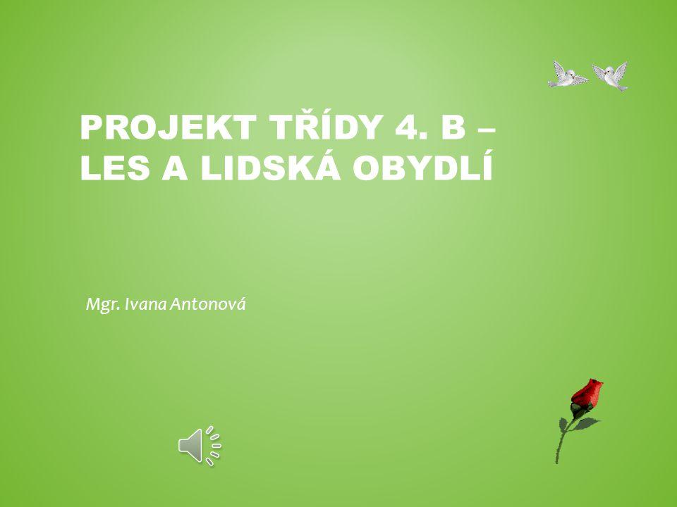 PROJEKT TŘÍDY 4. B – LES A LIDSKÁ OBYDLÍ Mgr. Ivana Antonová