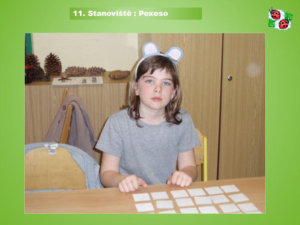 10. Stanoviště : Hra - loto