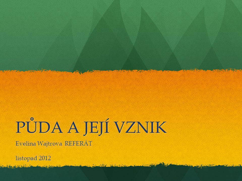 PŮDA A JEJÍ VZNIK Evelina Wajtrova REFERÁT listopad 2012