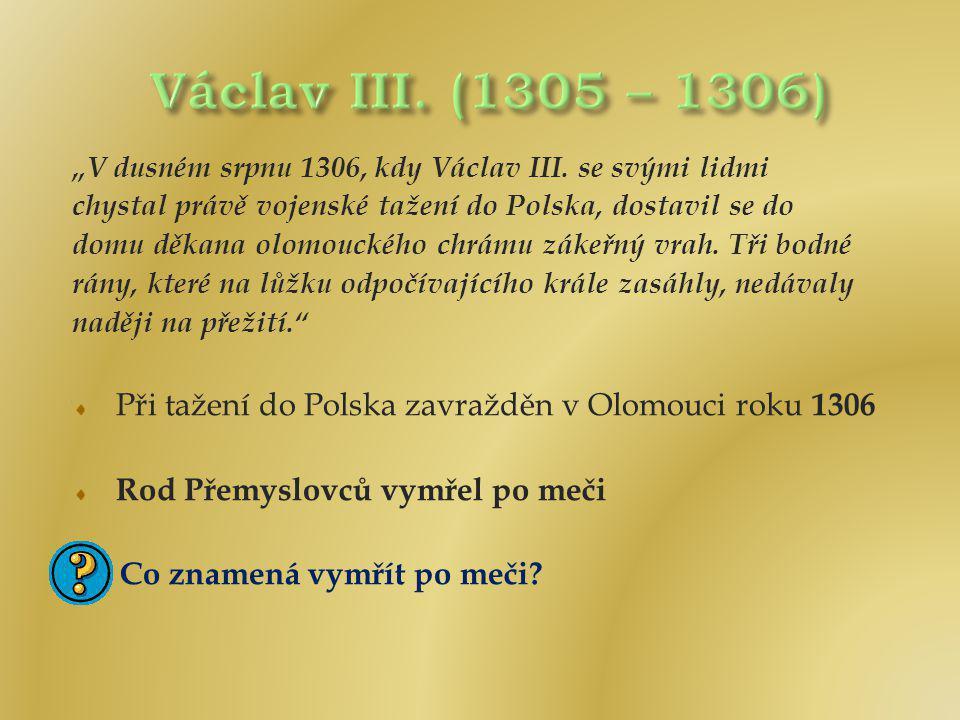 """""""V dusném srpnu 1306, kdy Václav III. se svými lidmi chystal právě vojenské tažení do Polska, dostavil se do domu děkana olomouckého chrámu zákeřný vr"""