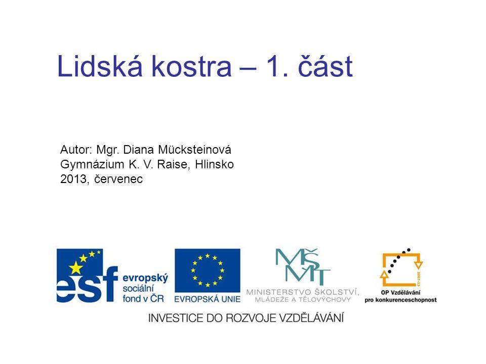 Lidská kostra – 1. část Autor: Mgr. Diana Mücksteinová Gymnázium K. V. Raise, Hlinsko 2013, červenec