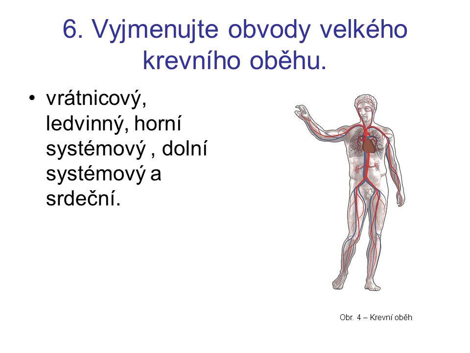 6. Vyjmenujte obvody velkého krevního oběhu. vrátnicový, ledvinný, horní systémový, dolní systémový a srdeční. Obr. 4 – Krevní oběh