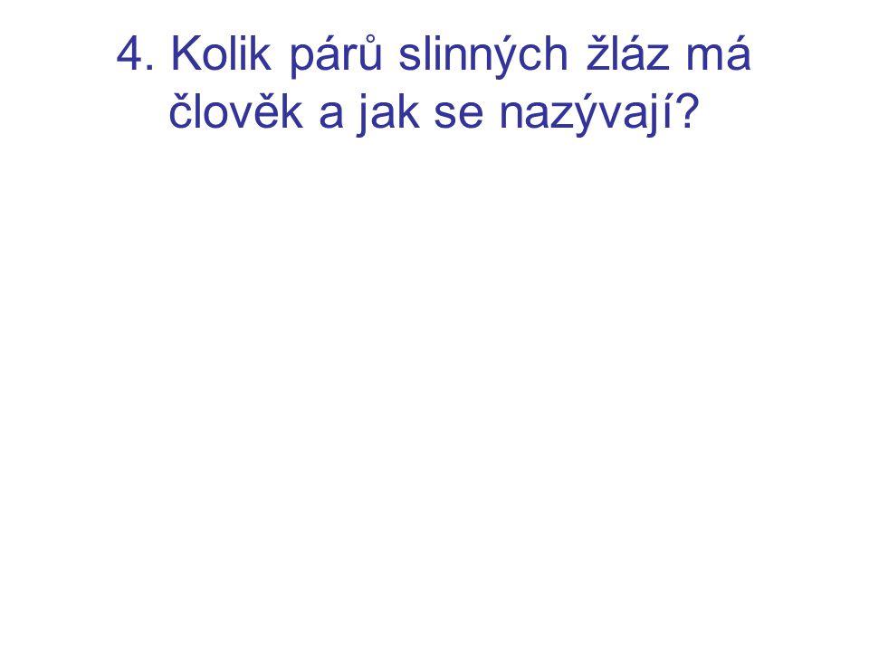 4. Kolik párů slinných žláz má člověk a jak se nazývají?