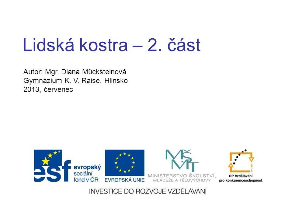 Lidská kostra – 2. část Autor: Mgr. Diana Mücksteinová Gymnázium K. V. Raise, Hlinsko 2013, červenec