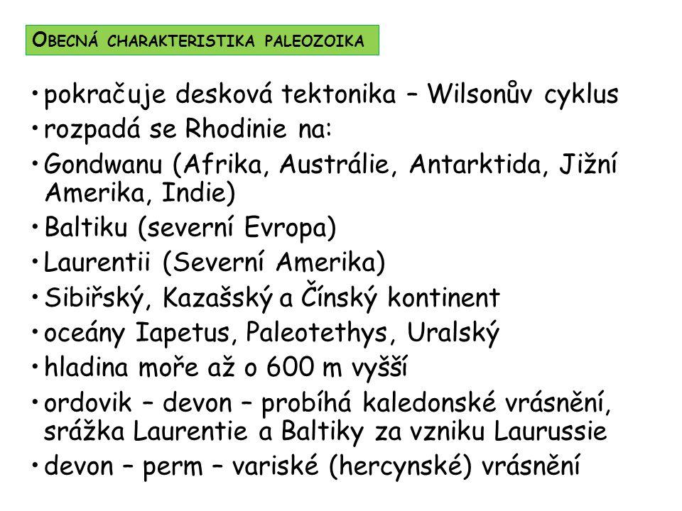 pokračuje desková tektonika – Wilsonův cyklus rozpadá se Rhodinie na: Gondwanu (Afrika, Austrálie, Antarktida, Jižní Amerika, Indie) Baltiku (severní