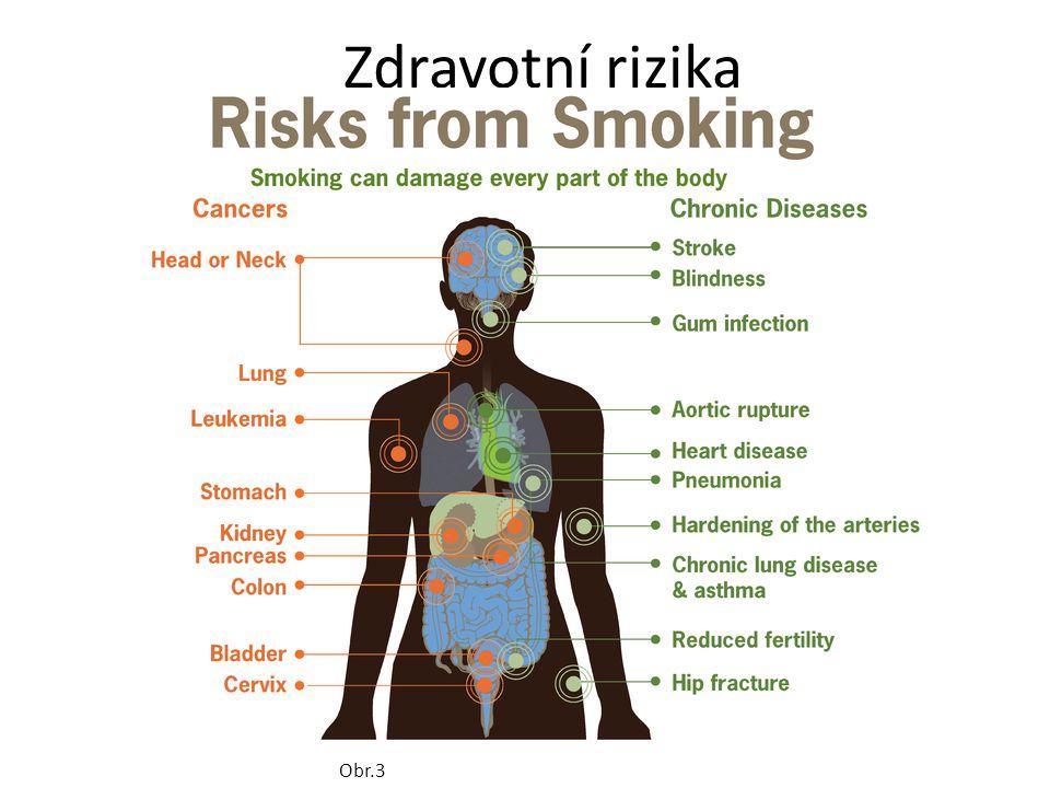 Zdravotní rizika Obr.3