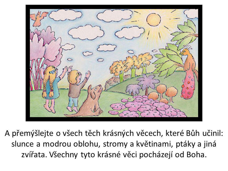 A přemýšlejte o všech těch krásných věcech, které Bůh učinil: slunce a modrou oblohu, stromy a květinami, ptáky a jiná zvířata.
