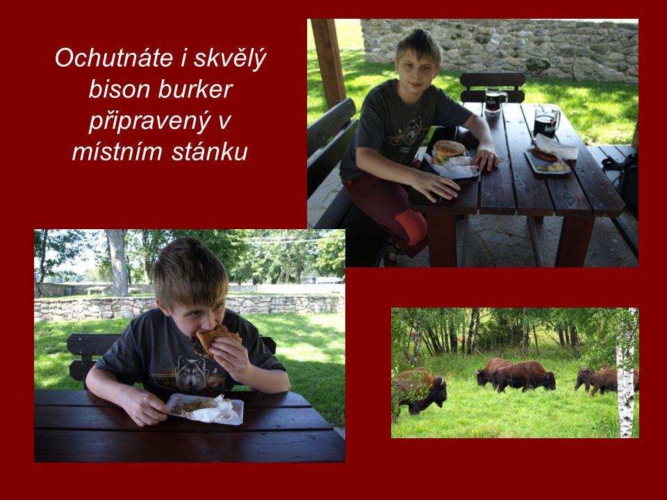 Ochutnáte i skvělý bison burker připravený v místním stánku