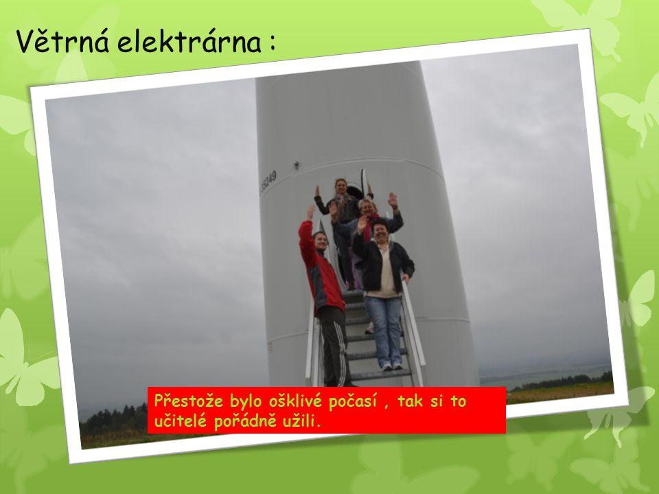 Větrná elektrárna : Přestože bylo ošklivé počasí, tak si to učitelé pořádně užili.