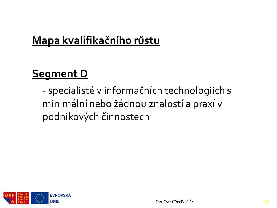 Mapa kvalifikačního růstu Segment D - specialisté v informačních technologiích s minimální nebo žádnou znalostí a praxí v podnikových činnostech Ing.