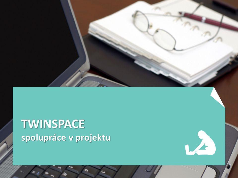 TWINSPACE spolupráce v projektu