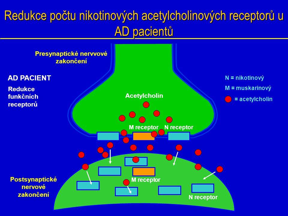 Redukce počtu nikotinových acetylcholinových receptorů u AD pacientů Postsynaptické nervové zakončení N receptor M receptor N = nikotinový M = muskari
