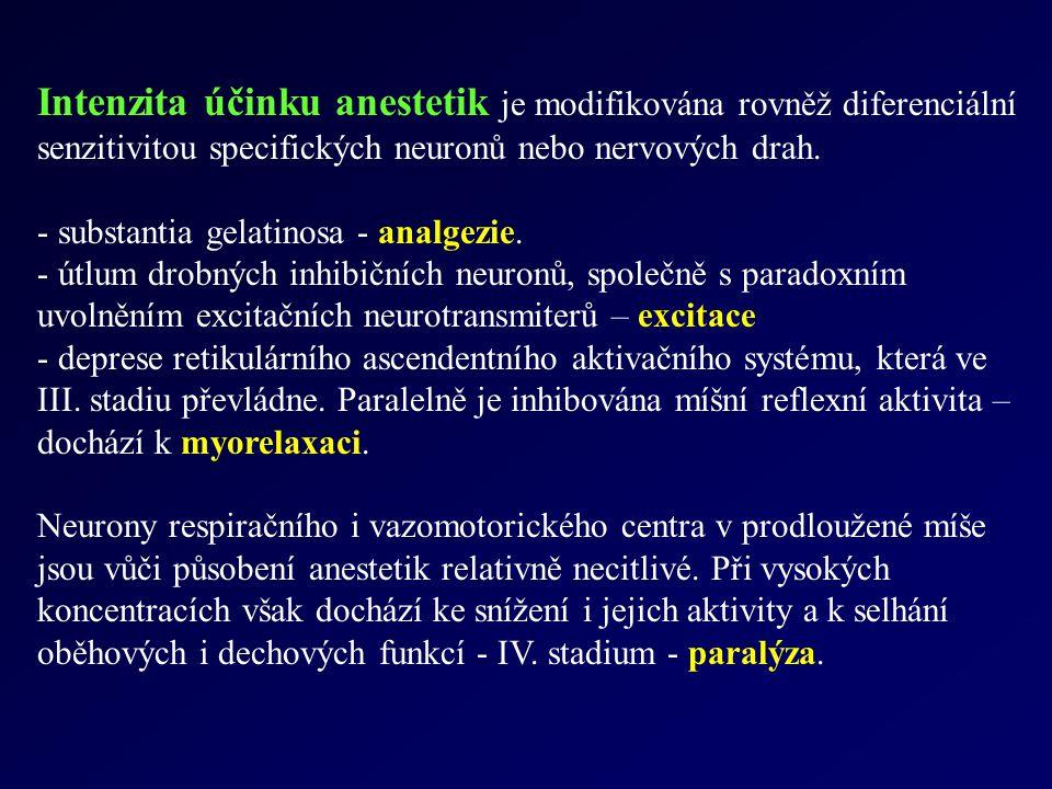 Intenzita účinku anestetik je modifikována rovněž diferenciální senzitivitou specifických neuronů nebo nervových drah. - substantia gelatinosa - analg