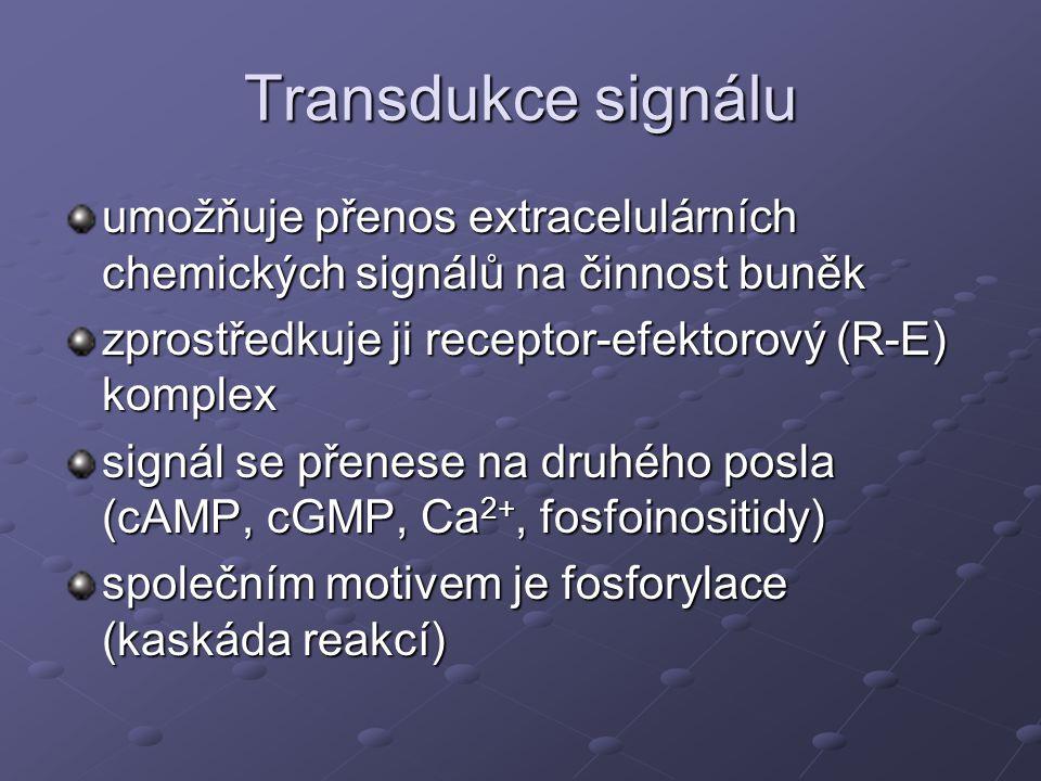 Transdukce signálu umožňuje přenos extracelulárních chemických signálů na činnost buněk zprostředkuje ji receptor-efektorový (R-E) komplex signál se p