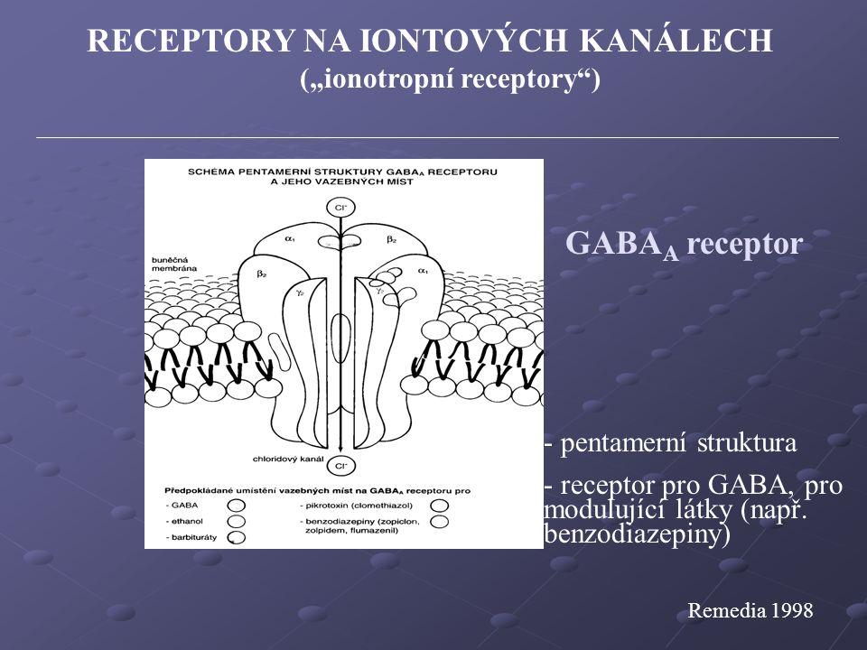 """Remedia 1998 RECEPTORY NA IONTOVÝCH KANÁLECH (""""ionotropní receptory"""") GABA A receptor - pentamerní struktura - receptor pro GABA, pro modulující látky"""