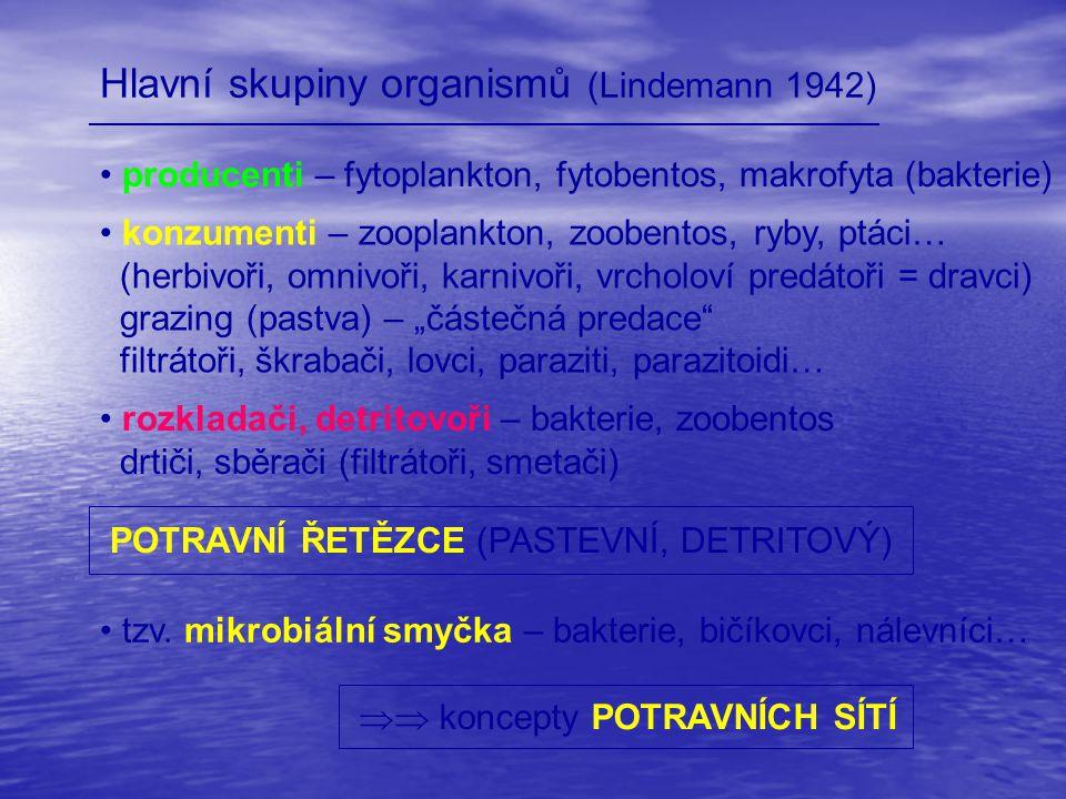 Hlavní skupiny organismů (Lindemann 1942) producenti – fytoplankton, fytobentos, makrofyta (bakterie) konzumenti – zooplankton, zoobentos, ryby, ptáci