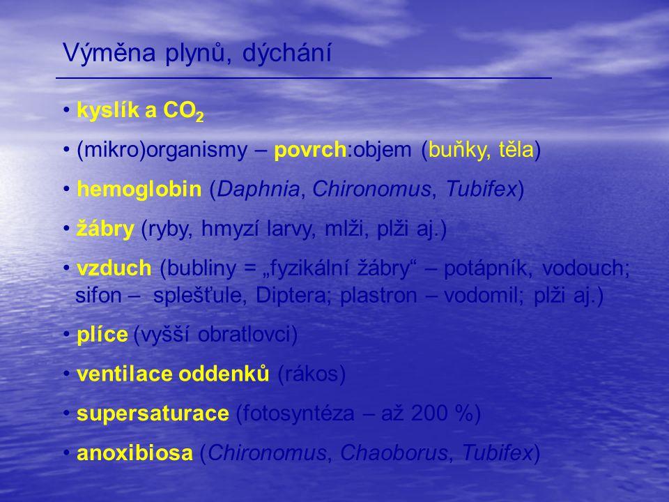 Výměna plynů, dýchání kyslík a CO 2 (mikro)organismy – povrch:objem (buňky, těla) žábry (ryby, hmyzí larvy, mlži, plži aj.) hemoglobin (Daphnia, Chiro