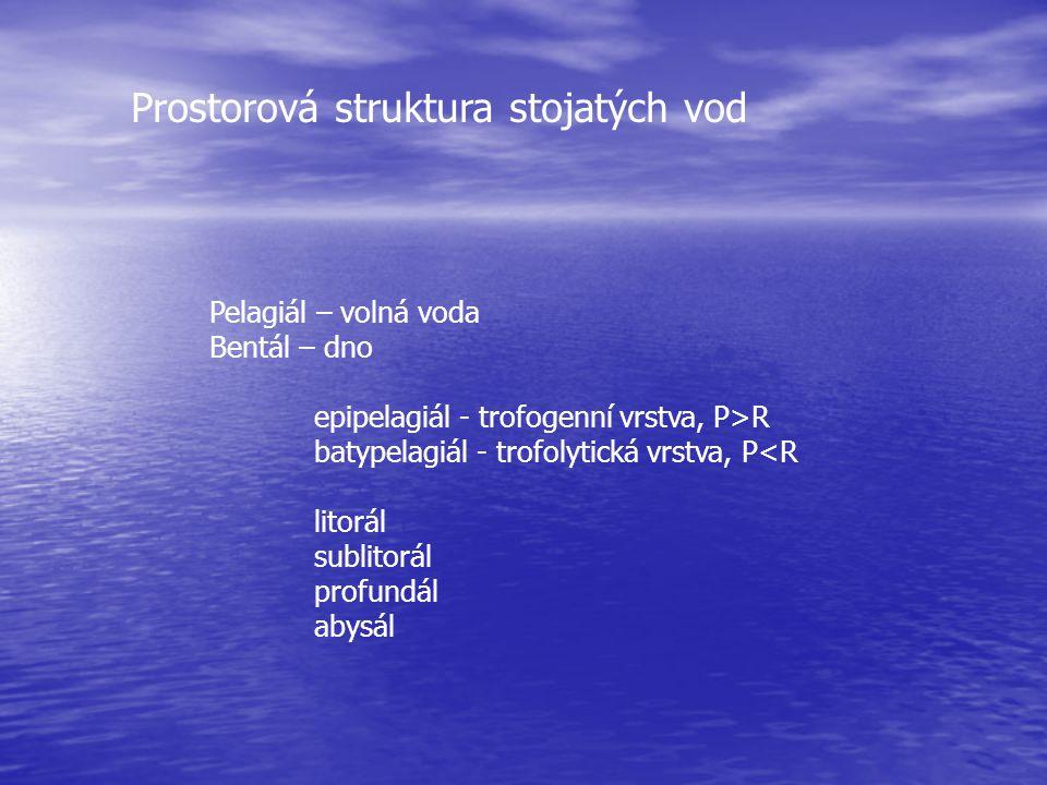 Prostorová struktura stojatých vod Pelagiál – volná voda Bentál – dno epipelagiál - trofogenní vrstva, P>R batypelagiál - trofolytická vrstva, P<R lit