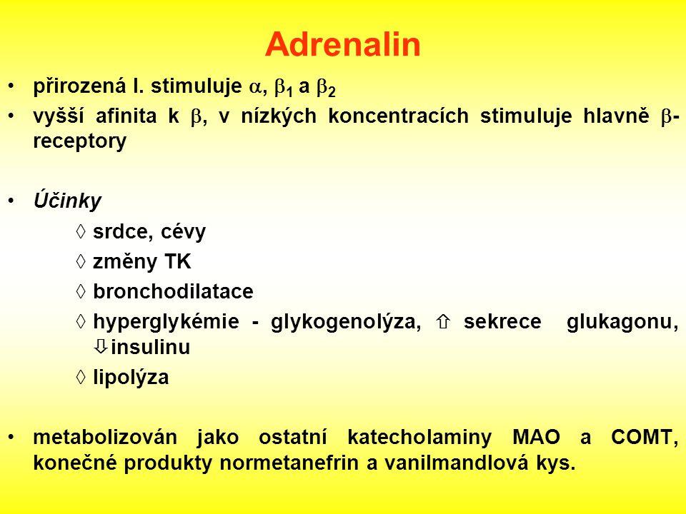 Adrenalin přirozená l. stimuluje ,  1 a  2 vyšší afinita k , v nízkých koncentracích stimuluje hlavně  - receptory Účinky  srdce, cévy  změny T