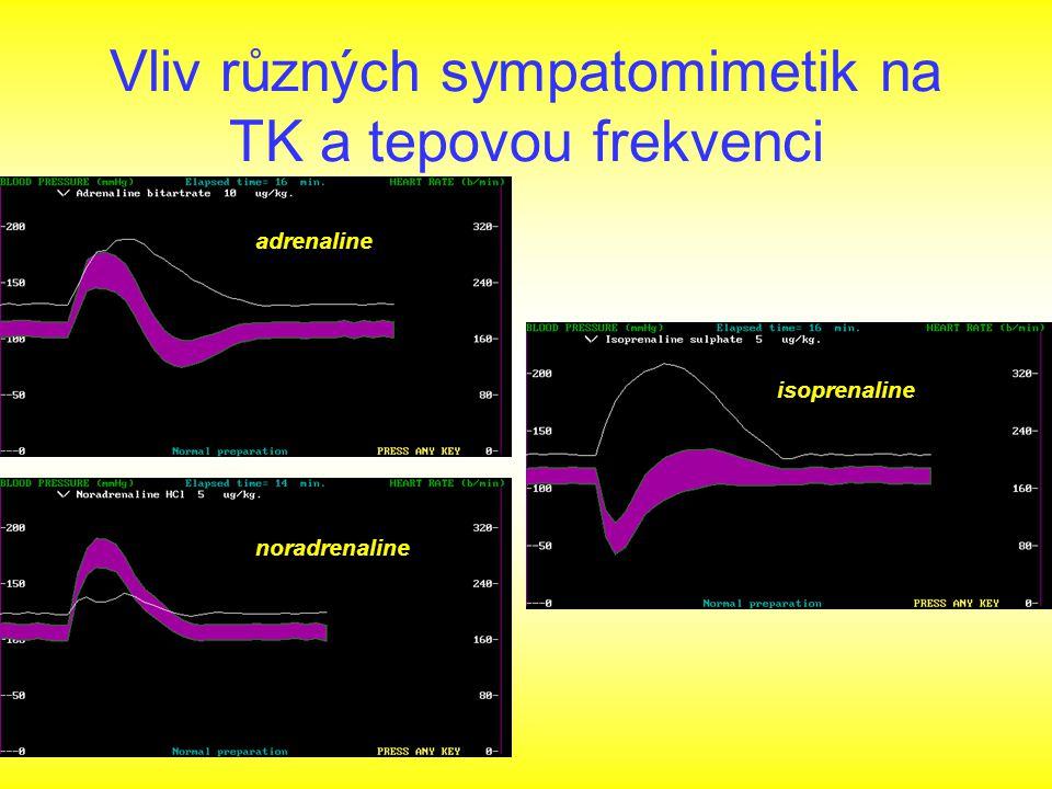Vliv různých sympatomimetik na TK a tepovou frekvenci adrenaline noradrenaline isoprenaline