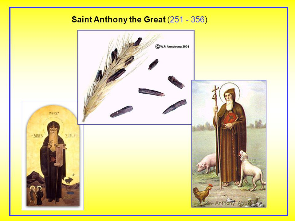 Saint Anthony the Great (251 - 356)