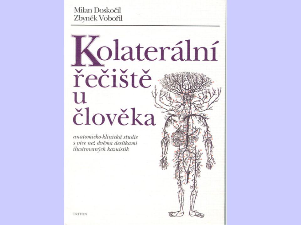 Anatomie moderní doby 9.5. 2011 Lékařský dům, Praha Koordinátor: Prof.