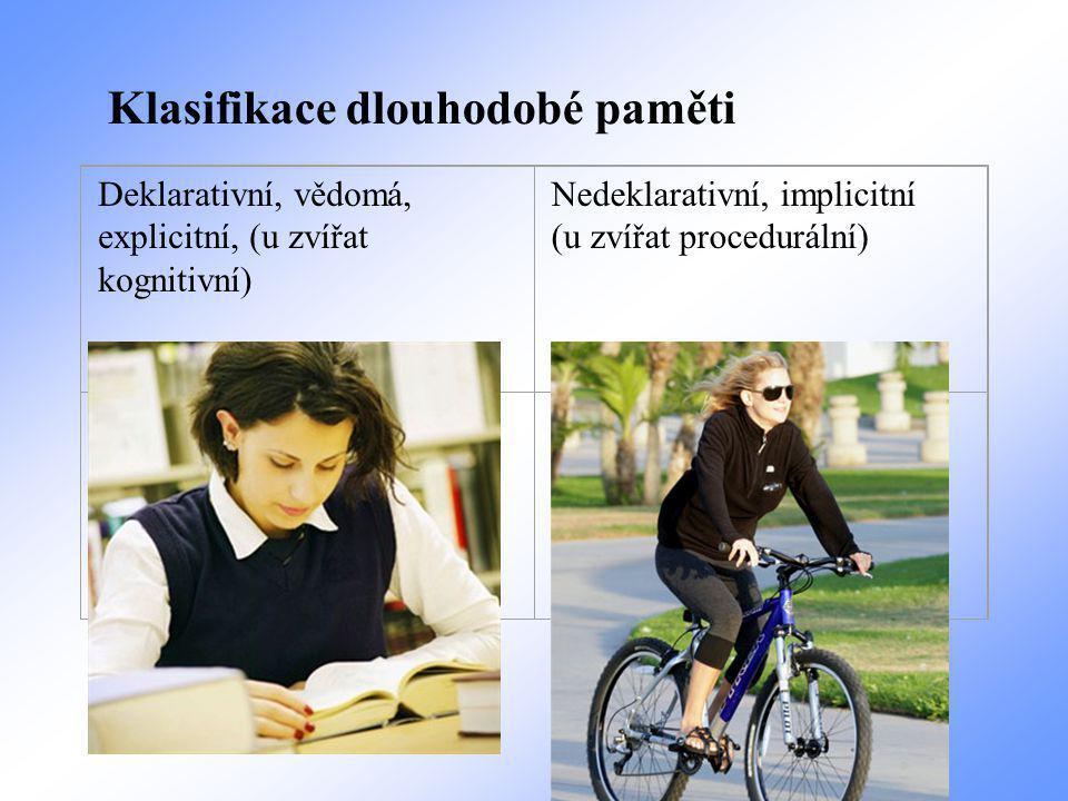 Deklarativní, vědomá, explicitní, (u zvířat kognitivní) Nedeklarativní, implicitní (u zvířat procedurální) Episodic Store events autobiograph ical Semantic Non associative Associative learning Klasifikace dlouhodobé paměti