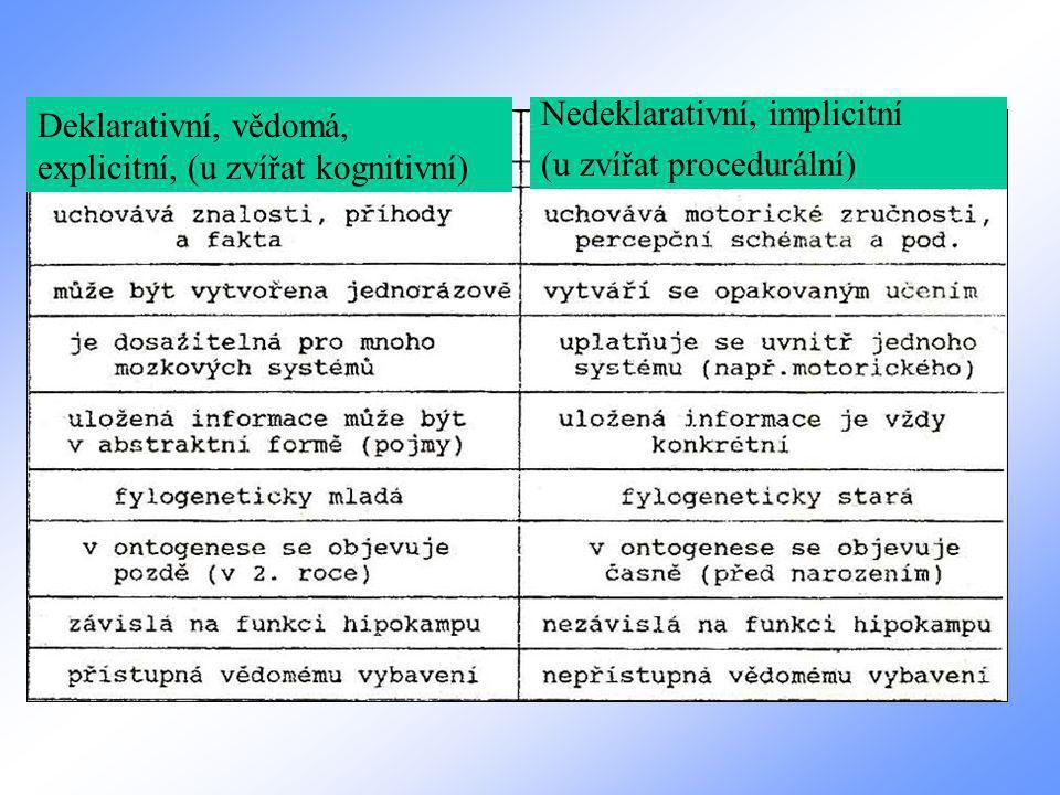 Deklarativní, vědomá, explicitní, (u zvířat kognitivní) Nedeklarativní, implicitní (u zvířat procedurální)