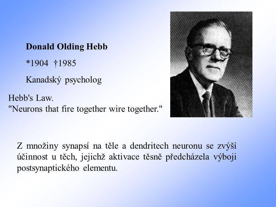 Donald Olding Hebb *1904 †1985 Kanadský psycholog Z množiny synapsí na těle a dendritech neuronu se zvýší účinnost u těch, jejichž aktivace těsně předcházela výboji postsynaptického elementu.