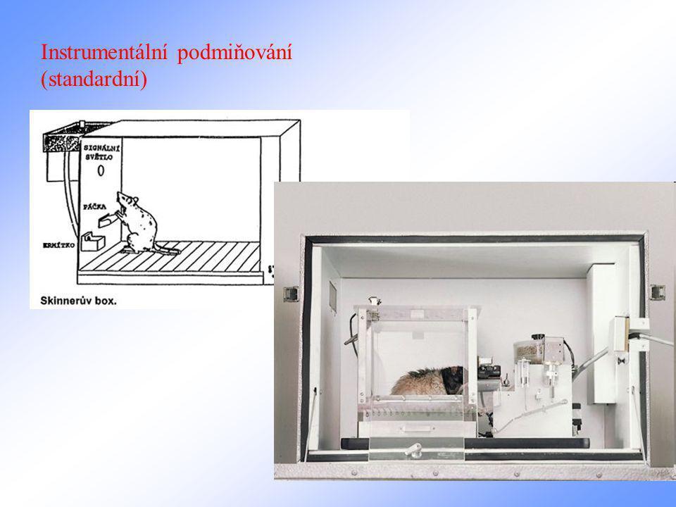 Instrumentální podmiňování (standardní)