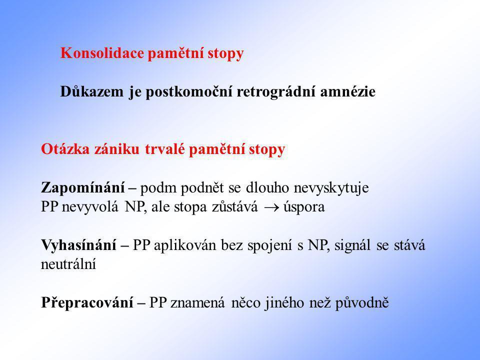 Konsolidace pamětní stopy Důkazem je postkomoční retrográdní amnézie Otázka zániku trvalé pamětní stopy Zapomínání – podm podnět se dlouho nevyskytuje PP nevyvolá NP, ale stopa zůstává  úspora Vyhasínání – PP aplikován bez spojení s NP, signál se stává neutrální Přepracování – PP znamená něco jiného než původně