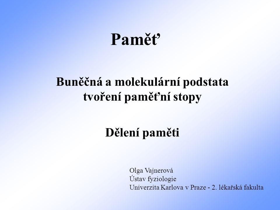Paměť Buněčná a molekulární podstata tvoření paměťní stopy Dělení paměti Olga Vajnerová Ústav fyziologie Univerzita Karlova v Praze - 2. lékařská faku