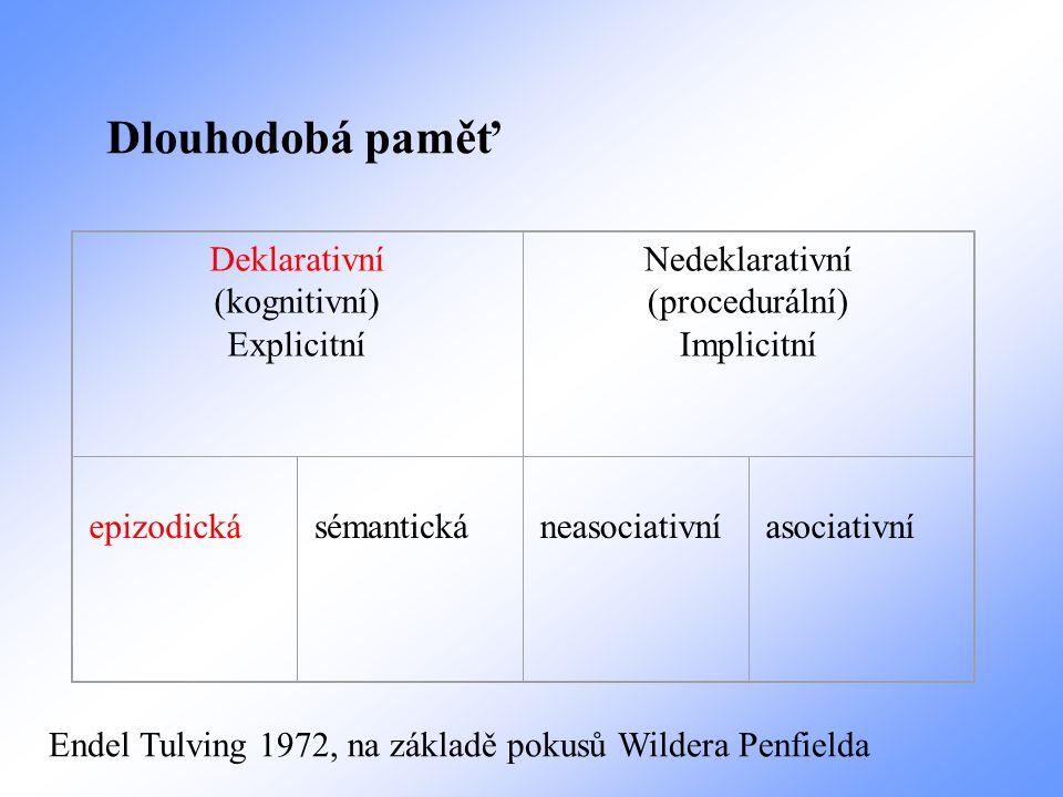 Deklarativní (kognitivní) Explicitní Nedeklarativní (procedurální) Implicitní epizodická sémantická neasociativní asociativní Dlouhodobá paměť Endel T