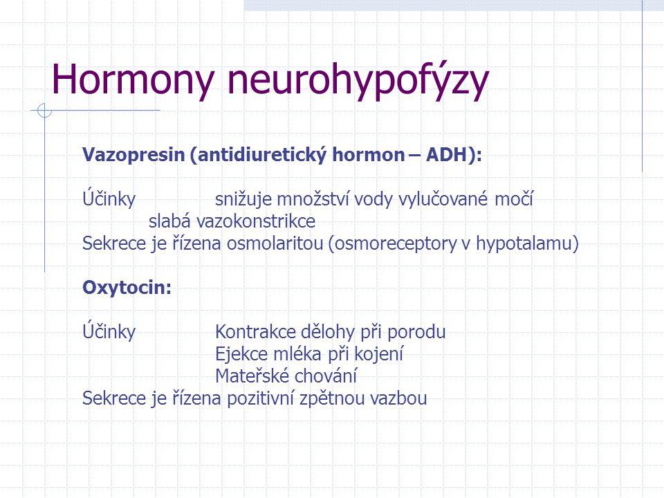 Hormony neurohypofýzy Vazopresin (antidiuretický hormon – ADH): Účinkysnižuje množství vody vylučované močí slabá vazokonstrikce Sekrece je řízena osmolaritou (osmoreceptory v hypotalamu) Oxytocin: ÚčinkyKontrakce dělohy při porodu Ejekce mléka při kojení Mateřské chování Sekrece je řízena pozitivní zpětnou vazbou