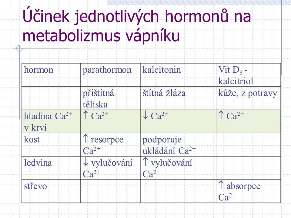 Účinek jednotlivých hormonů na metabolizmus vápníku hormonparathormonkalcitoninVit D 3 - kalcitriol přištítná tělíska štítná žlázakůže, z potravy hladina Ca 2+ v krvi  Ca 2+  Ca 2+  Ca 2+ kost  resorpce Ca 2+ podporuje ukládání Ca 2+ ledvina  vylučování Ca 2+  vylučování Ca 2+ střevo  absorpce Ca 2+