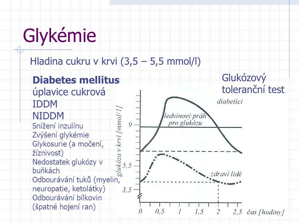 Glykémie Hladina cukru v krvi (3,5 – 5,5 mmol/l) Diabetes mellitus úplavice cukrová IDDM NIDDM Snížení inzulínu Zvýšení glykémie Glykosurie (a močení, žíznivost) Nedostatek glukózy v buňkách Odbourávání tuků (myelin, neuropatie, ketolátky) Odbourávání bílkovin (špatné hojení ran) Glukózový toleranční test