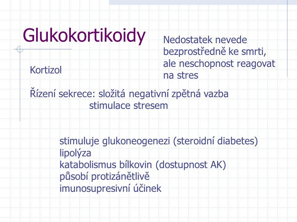 Glukokortikoidy Kortizol Řízení sekrece: složitá negativní zpětná vazba stimulace stresem stimuluje glukoneogenezi (steroidní diabetes) lipolýza katabolismus bílkovin (dostupnost AK) působí protizánětlivě imunosupresivní účinek Nedostatek nevede bezprostředně ke smrti, ale neschopnost reagovat na stres