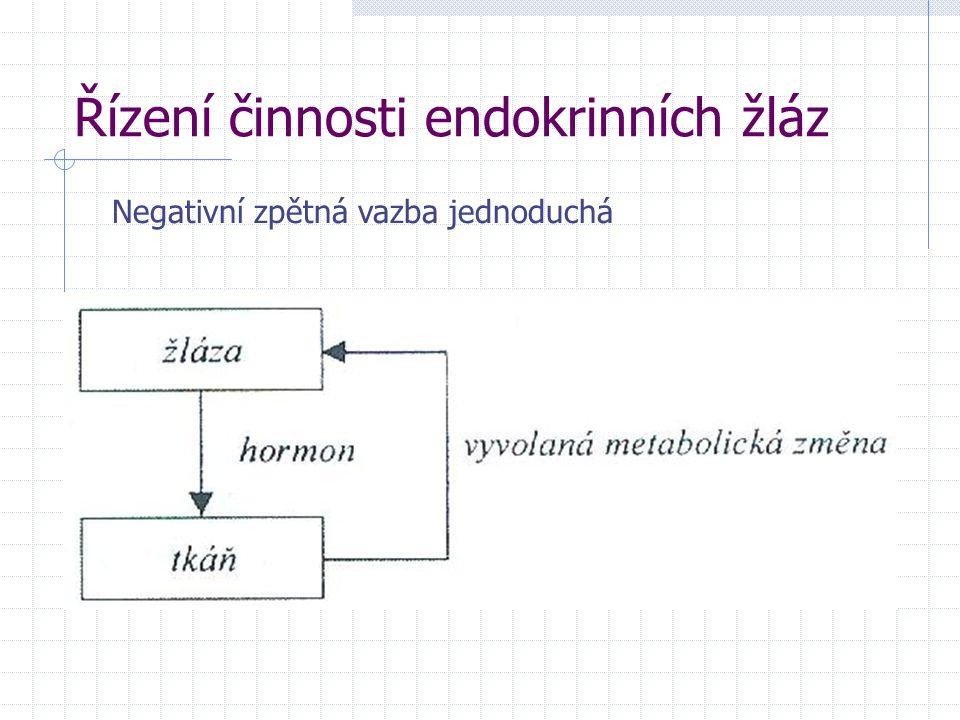 Řízení činnosti endokrinních žláz Negativní zpětná vazba jednoduchá