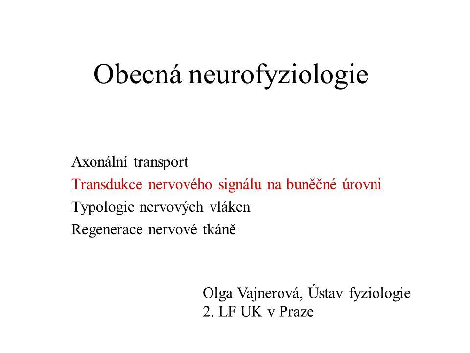 Obecná neurofyziologie Axonální transport Transdukce nervového signálu na buněčné úrovni Typologie nervových vláken Regenerace nervové tkáně Olga Vajnerová, Ústav fyziologie 2.