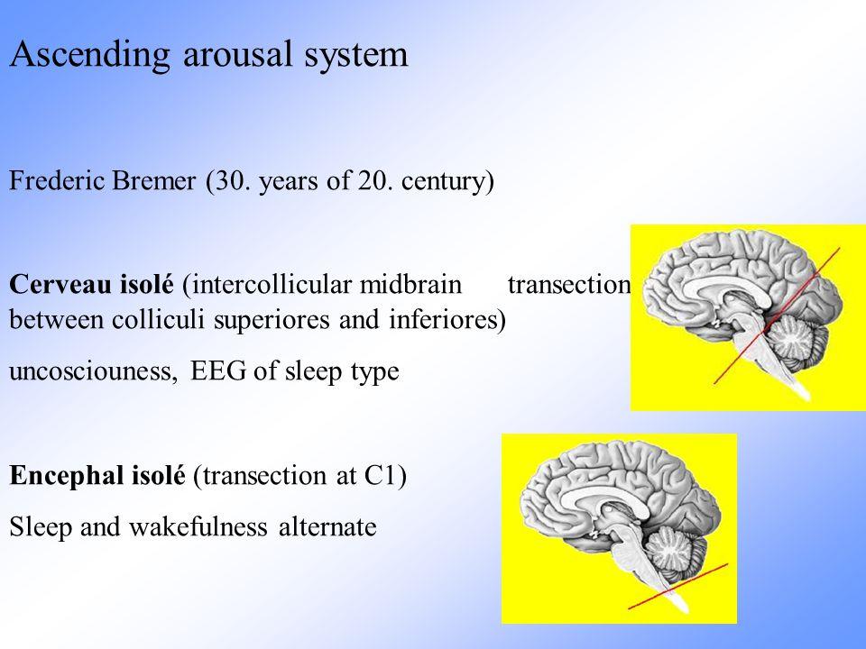 Pozornost Pozornost je zaměřenost a soustředěnost duševní činnosti na určitý objekt nebo děj.