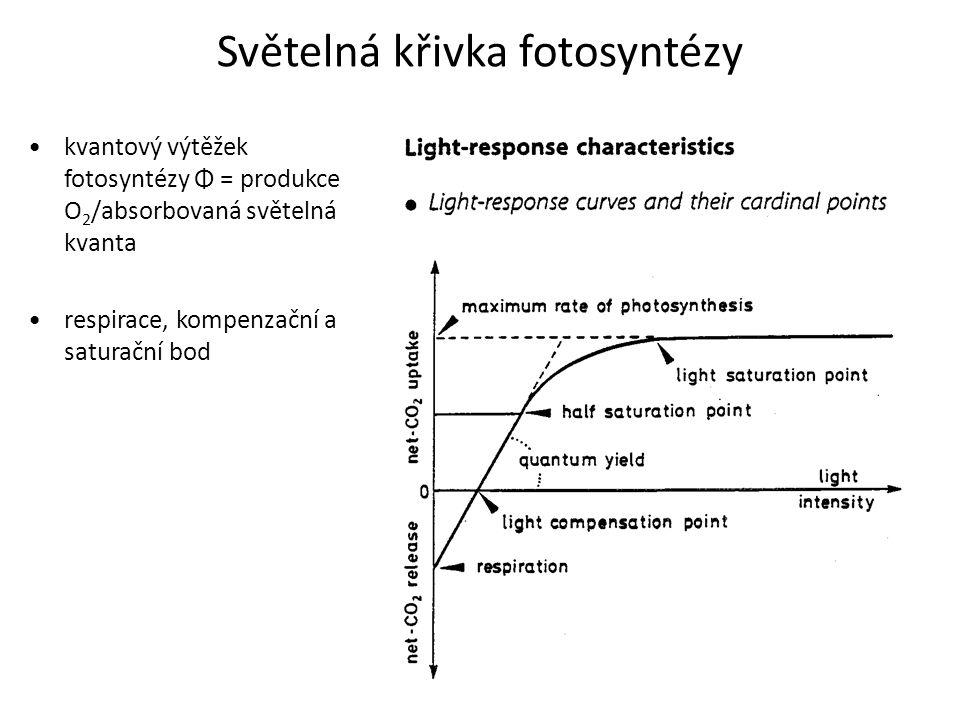 Světelná křivka fotosyntézy kvantový výtěžek fotosyntézy Φ = produkce O 2 /absorbovaná světelná kvanta respirace, kompenzační a saturační bod